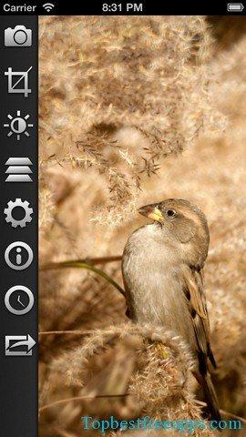 filterstorm iphone app